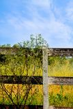 Country Fences. Old fences will soon be history as the plastics roll in Royalty Free Stock Images