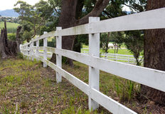 Country fencing. White country fencing with trees, paddocks and houses in distant background Stock Images