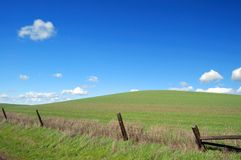 Country field royalty free stock image