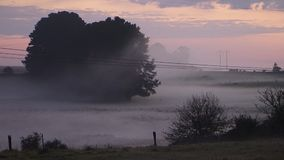 Country Field Morning Fog Mist. Rolling in with frost on grass stock footage