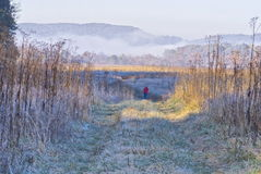 Country field and morning frost Stock Images