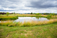 Country Fish Pond. Pond in the country on a large property with fish in it Royalty Free Stock Image