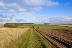 Country footpath Stock Images
