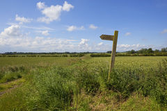 Country footpath sign. A wooden footpath sign amongst fields of wheat in the patchwork landscape of the yorkshire wolds under a blue summer sky Royalty Free Stock Photo