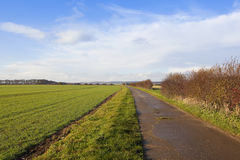 Country footpath Stock Photography