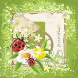 Country garden stock illustration