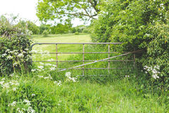 Country gate in a lush green field Royalty Free Stock Image