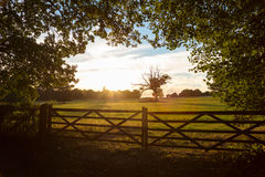 Country Gate and Trees in English Countryside at Sunset or Sunri Stock Image