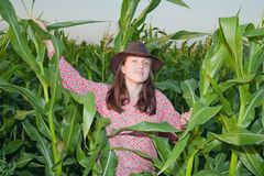 Country girl in corn field Royalty Free Stock Photos