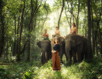 Country girl with elephants Royalty Free Stock Images
