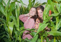 Country girls in corn field Royalty Free Stock Photo