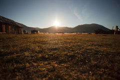 Country grass Royalty Free Stock Images