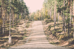 Country gravel road in the forest Stock Image