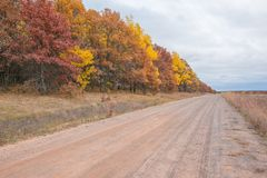 Country gravel road in rural Wisconsin with fall color autumn trees - yellow, orange, red, and brown.  stock photos