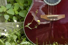 Country Guitar. Acoustic guitar with flower Stock Photo