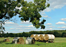 Country Hay Wagon. Rolls of hay seen scattered throughout a field & stacked on a old wooden wagon during harvest in early autumn stock photo