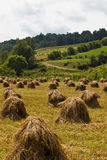 Country Haystacks Royalty Free Stock Photography