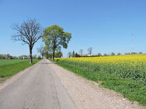 Country highroad  , Lithuania Stock Images