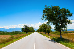 A country highway under a bright blue sky Royalty Free Stock Photo
