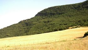 Country hillside and field. Farm field with forested hillside in the distance stock photo