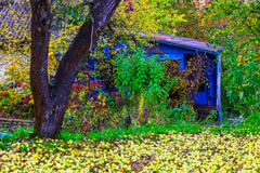 Country Home in Colorful Bushes In Autumn Stock Photo