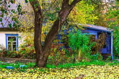Country Home in Colorful Bushes In Autumn Royalty Free Stock Photos