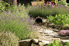 Country home garden by rustic style. Royalty Free Stock Photography