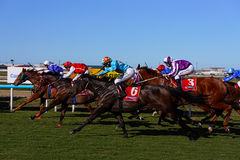 Country horse Race. Racing for the finish and the winning post at a country horse race meeting in Queensland, Australia Stock Photography