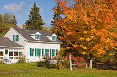 Country house in autumn. A New England country house surrounded by colorful autumn or fall trees.  Hancock, Maine Stock Image