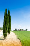Country house with cypress in Tuscany, Italy Stock Photography