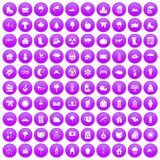 100 country house icons set purple. 100 country house icons set in purple circle isolated on white vector illustration royalty free illustration