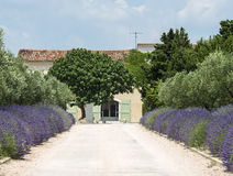 Country house near Montpellier Royalty Free Stock Photo