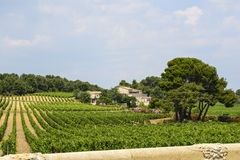 Country house near Montpellier. (Herault, Languedoc-Roussillon, France) at summer, with vineyard Royalty Free Stock Photo