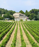 Country house near Montpellier. (Herault, Languedoc-Roussillon, France) at summer, with vineyard Stock Image