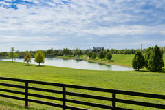 Country house and pond. On sunny summer day Royalty Free Stock Image