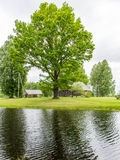 Country house with pond and oak trees with pond Stock Images