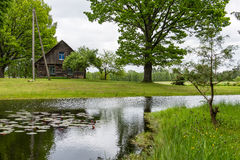 Country house with pond and oak trees with pond Royalty Free Stock Image