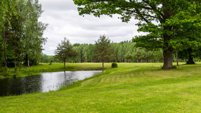 Country house with pond and oak trees with pond Royalty Free Stock Photo