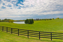 Country house and pond. On sunny summer day Stock Photo