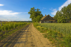 Country house on the sunny day Royalty Free Stock Photos