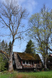 A country house. Between two trees Royalty Free Stock Photography