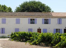 Country house with vineyard near Ste Marie de la Mer in the Camargue in France Royalty Free Stock Photo