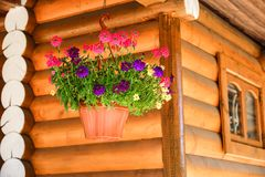 Country house with Windows made of laminated veneer lumber. Warm summer weather. Flowers in a pot. royalty free stock photo