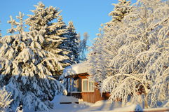 Country house in winter forest Royalty Free Stock Image
