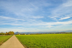 Country idyll with view to German highlands. And field of green manure royalty free stock photography