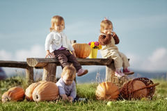 Country kids Stock Photography