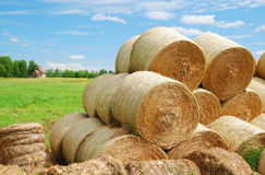Country ladscape with heap of straw bales Royalty Free Stock Image