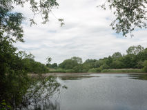 Country lake scene in summer england uk Royalty Free Stock Images