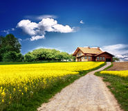 Country landscape Royalty Free Stock Photos