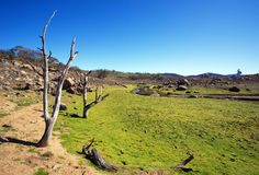 Country Landscape Australia Royalty Free Stock Photography